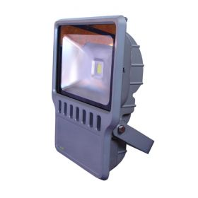 Flood Light 230V - 100W 1
