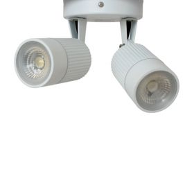 Eave Double Spotlight - 2x10W 12V 1